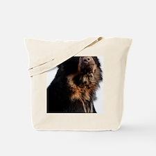 Sun bear Tote Bag