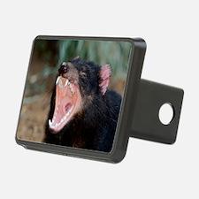 Tasmanian devil Hitch Cover