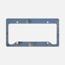 Territorial pied avocets License Plate Holder
