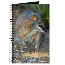 Tammar wallaby Journal