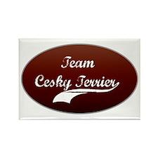 Team Cesky Rectangle Magnet (10 pack)