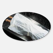 Dead body in a mortuary Sticker (Oval)