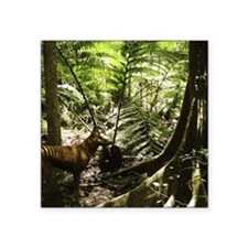 "Tasmanian wolf in forest Square Sticker 3"" x 3"""