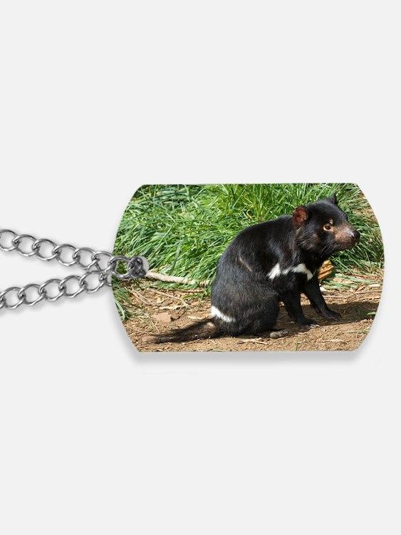 Tasmanian devil Dog Tags