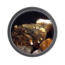 Toadfish Wall Clock