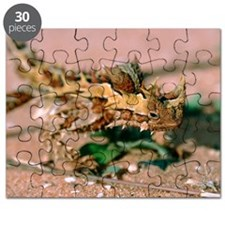 Thorny devil lizard Puzzle