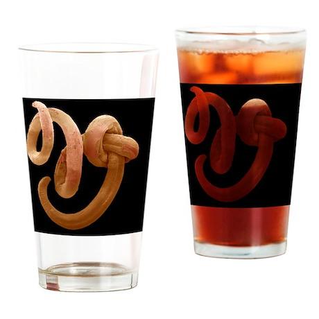 Threadworm, SEM Drinking Glass