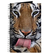 Tiger licking its paw Journal