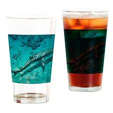 Tiger shark Drinking Glass