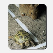Tortoise and hare Mousepad