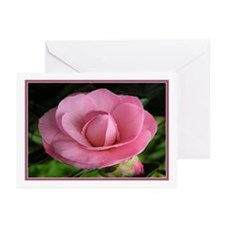 ...Camellia 01... Note Card (Pk of 10)