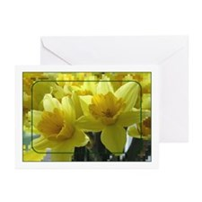 ...Daffodils 02... Note Cards (Pk of 10)