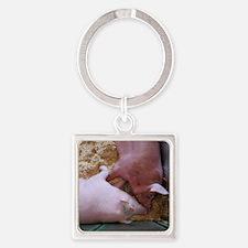 Pig Love Square Keychain