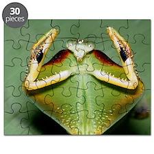 z2750149 Puzzle