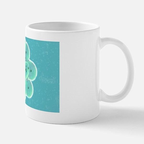 Embryo formation Mug