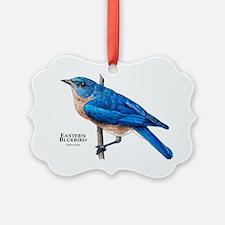Eastern Bluebird Ornament