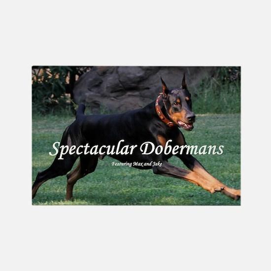 Spectacular Dobermans Rectangle Magnet