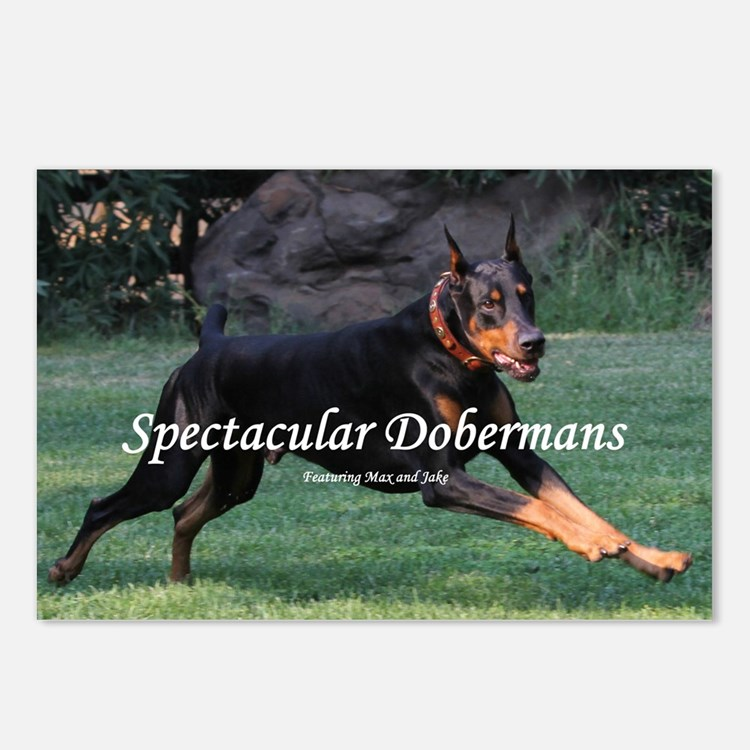 Spectacular Dobermans Postcards (Package of 8)