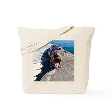 US Navy California sea lion Tote Bag