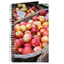 Gala apples Journal