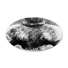 s9200145 Oval Car Magnet