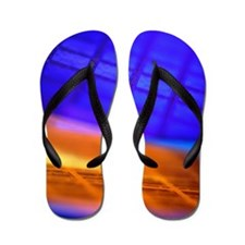 View of two silicon wafers with their c Flip Flops