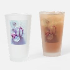 Garlic bulbs Drinking Glass