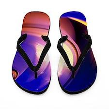 t8750804 Flip Flops