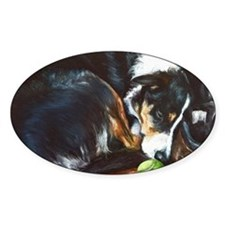 Border Collie Sleeping Decal