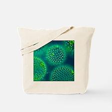 Volvox colonies Tote Bag