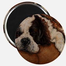 Saint Bernard Sleeping Magnet