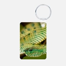 Wagler's pit viper Keychains