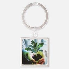 Genetically modified plant Square Keychain