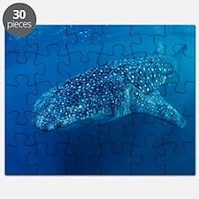 Whale shark Puzzle