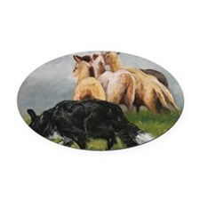 Border Collie and Sheep Oval Car Magnet