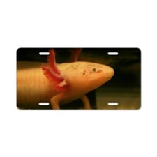 White Mexican axolotl Aluminum License Plate