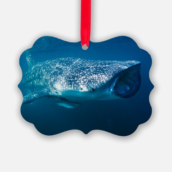 Whale shark and pilot fish Ornament