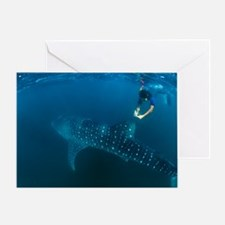 Whale shark and snorkeler Greeting Card