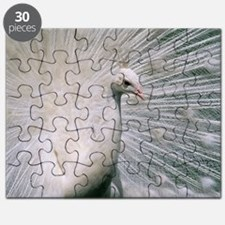 White peacock Puzzle