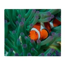 Western clown anemonefish Throw Blanket
