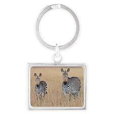Plains zebra Equus quagga with  Landscape Keychain