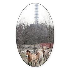 Wild horses near Chernobyl Decal