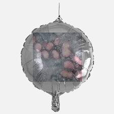 H5N1 avian influenza virus particles Balloon
