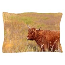 Highland cow in field Pillow Case