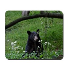 Young black bear smelling wildflowers Mousepad