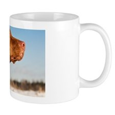 Staring Vizsla Dog Headshot in Profile  Small Mugs