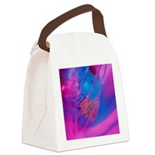 Globe with fiber-optic cable Canvas Lunch Bag