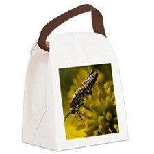Wild wing-stems have finally star Canvas Lunch Bag