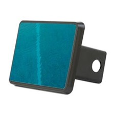 Painted lines in swimming  Hitch Cover