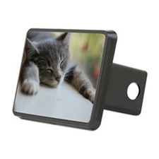 Napping gray tabby kitten Hitch Cover